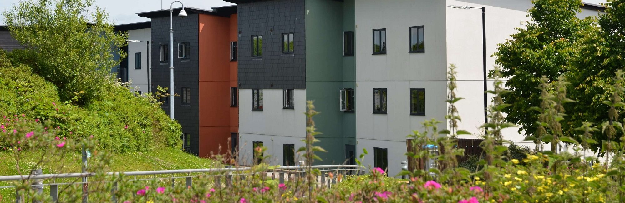 Glasney Rooms and Flats